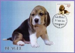 Kazakhstan 2019.  Maxicard (Maximum Cards). Fauna. Beagle. Puppies. Dogs. - Cani