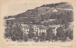 88 - Bussang - Beau Cliché De L'Hôtel Des Sources - Bussang