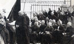 29   DOUARNENEZ  LES COMMISES DES CONFISERIES DE SARDINES ACHETANT LE POISSON - Douarnenez