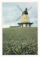 Danemark Moulin Sur L'Ile De Bogo (2 Scans) - Denmark