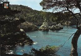 Espagne Mallorca Detalle De La Costa Codols Blanchs (2 Scans) - Mallorca