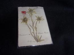 Carte Postale Herbier. Edelweiss. Je Porte Bonheur .Voir 2 Scans. - Timbres