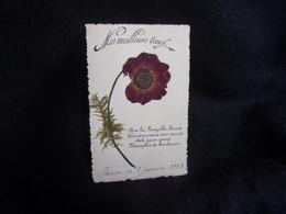 Carte Postale Herbier.Fleurs.Pensée.Voir 2 Scans. - Timbres