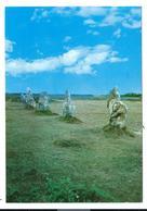 CAMARET - Menhir - Menhirs - Alignement De Lagatjar - Dubray éditeur 373/1101 - Camaret-sur-Mer