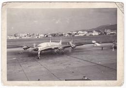 """AEREOPLANO - PLANE  """" Lockheed Super Constellation STARLINER L-1649A  TWA """" - FOTO ORIGINALE - Aviazione"""