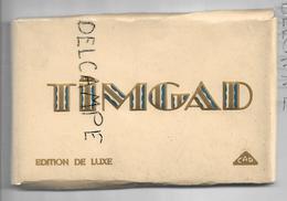 Carnet De 19 Cartes Postales  Des Ruines Romaines De Timgad. - Algérie