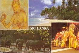 Sri Lanka Divers Aspects (2 Scans) - Sri Lanka (Ceylon)