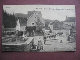 CPA 21 Entrée VAL SUZON HAUT ANIMEE & VACHES 1917 Canton FONTAINE LES DIJON - France
