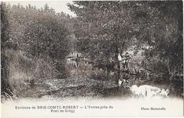 BRIE COMTE ROBERT Environs (77) L'Yerres Près Du Pont De Gregy - Brie Comte Robert
