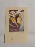 (M2) Souvenir De Ma Messe D'Actions De Grâces De Joseph Schmetz (Missionnaire Lazariste) Polleur,28 Mai 1944. - Images Religieuses