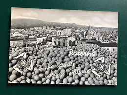 PATERNO' (CATANIA) LE PIU' SQUISITE ARANCE SICILIANE  1960 - Catania