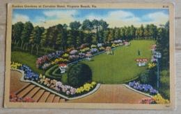 Sunken Gardens At Cavalier Hotel Virginia Beach - Virginia Beach