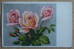 Rosen - Flores