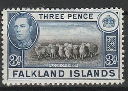 FALKLAND 1937-41 YT N° 81A * - Falkland
