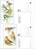 1067 - 8 Czech Republic Paridae Fringilla 2020 Goldfinch Chaffinch Hawfinch Marsh Tit Crested Tit Great Tit Blue Tit - Tchéquie