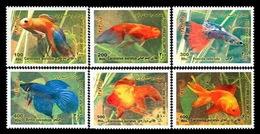 2004 - Ornamental Fresh Water Fishes  - Iran - Iran