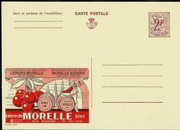 Publibel Neuve N° 2282  ( Bière - Bier à La Cerise : MORELLE  - St-Trond) - Werbepostkarten