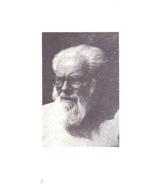 Devotie Doodsprentje Overlijden - Broeder Oblaat Missionaris Gerard Pison - Korbeek Lo - De Panne 1983 - Décès