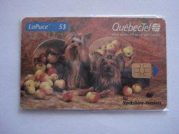 Carte Téléphonique Du Canada ( N.S.B ). - Canada