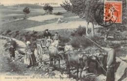 07 ARDECHE  Attelage à 4 Boeufs Sur Le Chemin De Rochelipe De La LOUVESC - La Louvesc