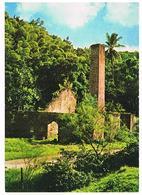 ANTILLES  RADIEUSES  MARCHANDE  DE FLEURS   TBE VR10 - Antilles