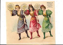Grand DECOUPI , Femmes, Médailles D'or Produits Trocadéro De Henry AGGERAY à VALENCE, Exposition PARIS 1894/1895 - Enfants