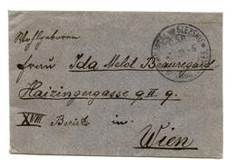 Czechoslovakia Letter Cover Posted 1924 Liptál Ve Slezsku To Wien B200401 - Czechoslovakia