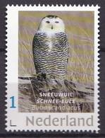 Nederland - Beurspostzegel 2019 - Sneeuwuil - Uil/owl/Eule/chouette - MNH - Owls