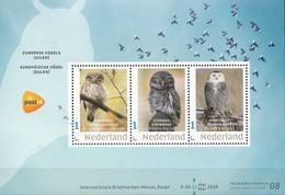 Nederland - Beurspostzegel 2019 - Velletje - Dwerguil/steenuil/sneeuwuil - Uil/owl/Eule/chouette - MNH - Owls