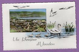 Suisse Canton De Vaud Un Bonjour D Yverdon - Cygne Carte Ecrite 1965 - - VD Vaud