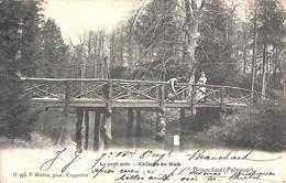 Braaschaet Braaschaat Polygone - Le Pont Noir - Château Du Mick (F. Hoelen) - Brasschaat