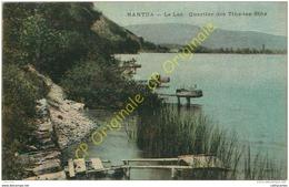 01.  NANTUA .  Le Lac . Quartier Des Tins Tes Bins . - Nantua