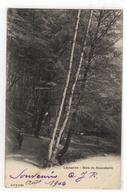 Lausanne - Bois De Sauvabelin  CPN 2789      1904 - Suisse