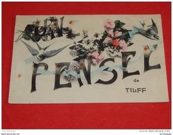 TILFF  -  Une Pensée De Tilff   -  1908    - - Esneux