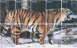 CHINA F-052 Prepaid ChinaSatcom - Animal, Cat, Tiger - 12 Pieces - Used - China