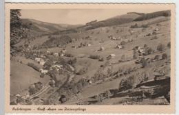 (22361) Foto AK Groß-Aupa, Velka Upa, Panorama 1940 - Boehmen Und Maehren