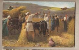 La Sacra Scrittura - Ritorno Dell'Arca Dell'Alleanza - Altri