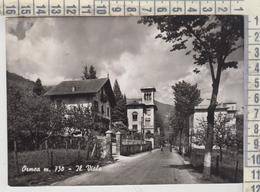 Ormea Cuneo Il Viale 1955 - Cuneo