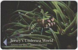 JERSEY A-440 Magnetic Telecom - Animal, Sea Life, Coral, Shrimp - 49JERD - Used - Ver. Königreich