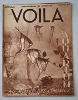Revue VOILA 1937 N° 350 Aquarium Du Musée Des Colonies Axe Londres Berlin Plaisirs Du Ski Chimie De L'amour Reporter - 1900 - 1949