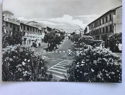 RONCIGLIONE  -VIALE G.GARIBALDI - VIAGGIATA  FG - Viterbo