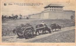 CHINA Chine - Stad / Ville De SWL-VUAN ( Attelage ) Non Loin, Hôpital Des Missionnaires De Scheut - CPA - Asia Asie - Chine