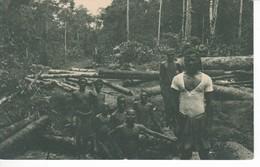 POSTAL DE GUINEA ESPAÑOLA DE UN DESBOSQUE DE LA AGRICOLA DE BATA (EXPO IBERO-AMERICANA SEVILLA 1929) - Equatorial Guinea