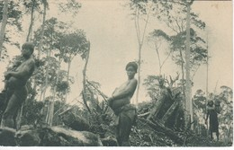 POSTAL DE GUINEA ESPAÑOLA DE MUJERES INDIGENAS EN UN DESBOSQUE A 50 Km DE BATA (EXPO IBERO-AMERICANA SEVILLA 1929) - Guinée Equatoriale
