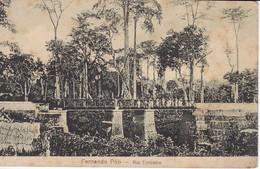 POSTAL DE FERNANDO POO DEL RIO TIMBABE - (GUINEA ESPAÑOLA) - Equatorial Guinea