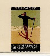 Suisse (?) Vignette Ski * - Skiing