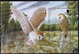 2001 Jersey Barn Owl Souvenir Sheet (** / MNH / UMM) - Owls