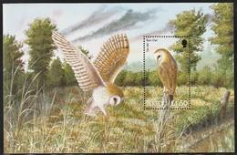 2001 Jersey Barn Owl Booklet Sheet (** / MNH / UMM) - Owls