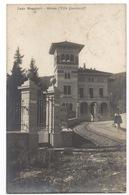 Cartolina-Postcard, Viaggiata (Sent), Stresa, Lago Maggiore - Verbania