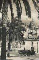 ESPAGNE - Palma De Mallorca - Catedral Y Palacio Almudaina - Palma De Mallorca